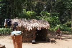 Campement de pygmées