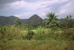 Bamenda Ring Road