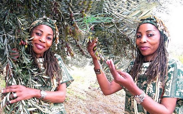 Les femmes bassa et douala le mbit vous a koi les enfoireacutes 237mp4 - 5 7