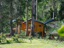 Ebogo Lodge