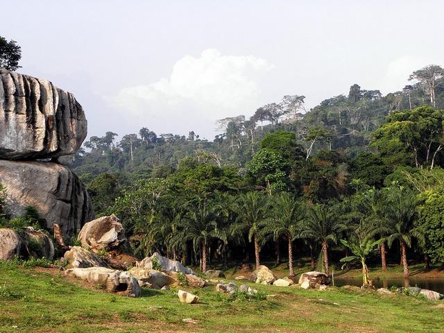 Parc d'Ebolowa