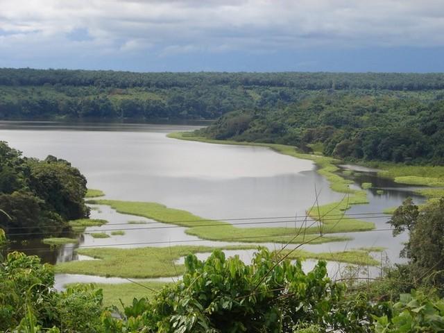 Réserve de faune Douala Edéa