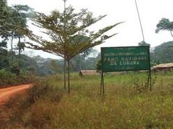 Parc de Lobéké