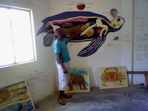 tortues Ebodjé
