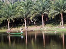 Lac d'Ebolowa